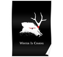Winter Is Coming Poster