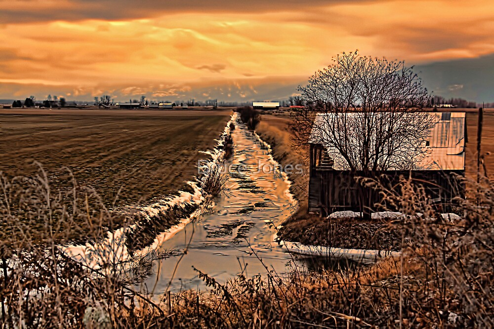 The Irrigation Canal by Bruce Jones