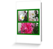 pretty collection Greeting Card