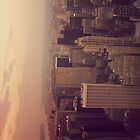 New York City Manhattan View from Empire State Building 2 by buselikmakami