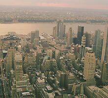NYC View from Empire State Building by buselikmakami