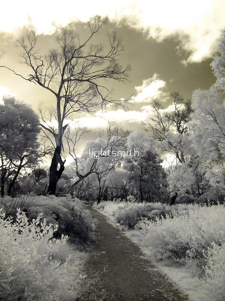 Phillip Island - Wonderwalk Original by lightsmith