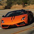 Lamborghini Gallardo LP570-4 Spyder Performante - Cornering by Pavle
