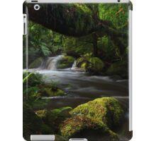 Spring flood iPad Case/Skin