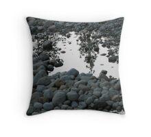 Monochrome Reflections Throw Pillow