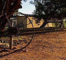 Linga Longa Station Farm Stay by warriorprincess