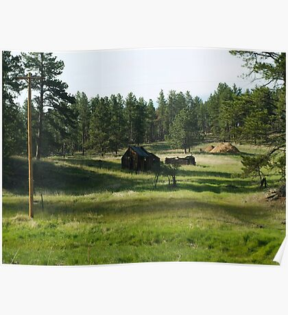 Pioneer Cabin Poster