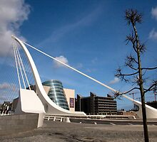 Samuel Beckett Bridge  by Ross Ellis