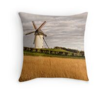 Windmill 2 Throw Pillow