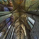 Reims Cathedral upshot by Victor Pugatschew