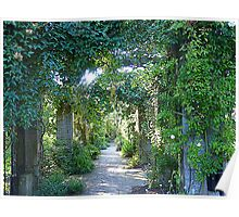 Leafy Walkways Poster