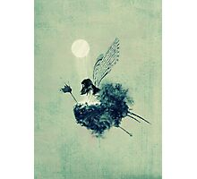 Fairy calypso Photographic Print