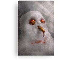 Winter - Snowman - What are you looking at Canvas Print
