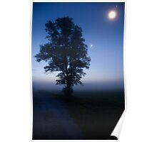 Moonlit dawn Poster