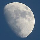 Blue Moon by Alex Call
