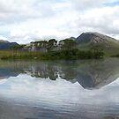 The Twelve Pins Roundstone in Connemara  by Declan Carr