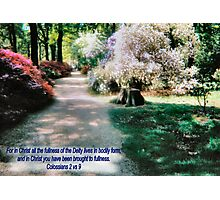 White Mist Isabella Plantation TEXT ADDED/BESPOKE TEXT Photographic Print