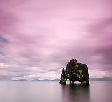 Iceland: Dinosaur by Nina Papiorek