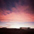 Iceland: Plane Wreck by Nina Papiorek