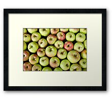 Little Green Apples Framed Print