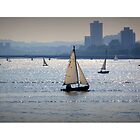 Sail Boats, Charles River, Boston by Amanda Vontobel Photography