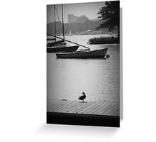 Duck on the Dock Greeting Card