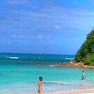 Beach in Antigua by Roland Pozo