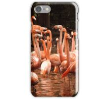Pink Reflections iPhone/iPod Case iPhone Case/Skin