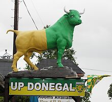 Up Donegal For GAA Finals in September 2012 by mikequigley