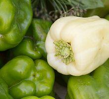 Albino Bullnose Pepper  by Bo Insogna