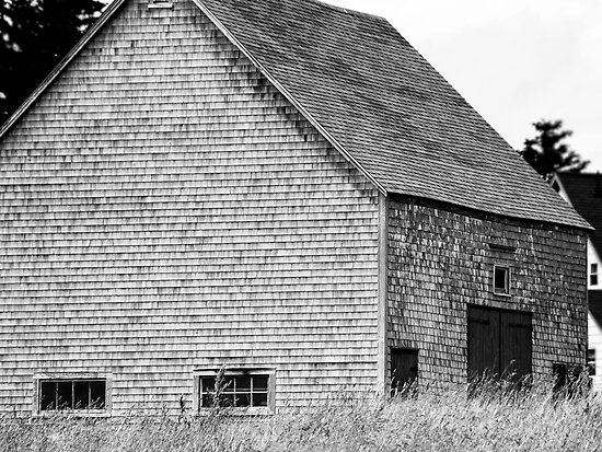Barn by phaedra1973