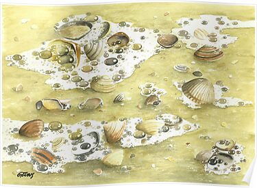 SHELLS ON THE BEACH by RainbowArt