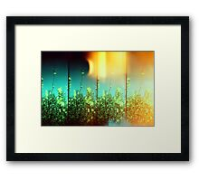 Magic Days Framed Print