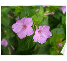 Pink! Poster