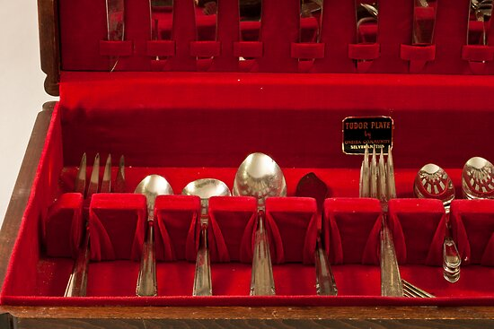 Silverware by Sandra Foster
