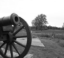 Saratoga Battlefield by jeffreynelsd