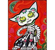 Gato De Los Muertos Photographic Print