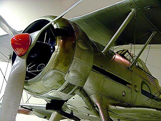 Gloster  Gladiator...........! by Roy  Massicks
