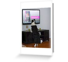 Clever dog  'Ollie'.........................! Greeting Card