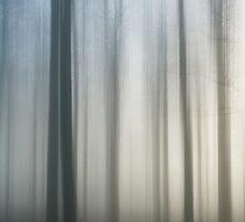Hollow by Carol Knudsen