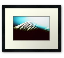 Occasional Resurfacing Framed Print