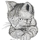 Cat Drawing by John Symonette