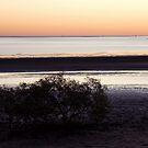 Dusk, Karumba, Far North Queensland by Adrian Paul