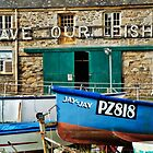 Save Our Fish ~ Newlyn Harbour by Susie Peek