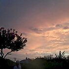 July 2012 Sunset 24 by dge357