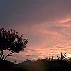 July 2012 Sunset 26 by dge357