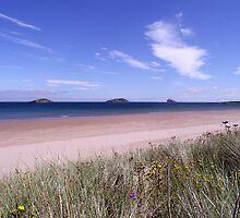 Beach Panorama by pantherart