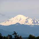 Mount Baker in the early evening by lenslife