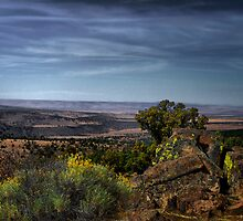The Beautry Of The Steens by Charles & Patricia   Harkins ~ Picture Oregon