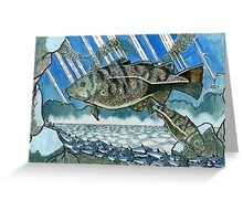 Atlantic cod hunting herring  Greeting Card